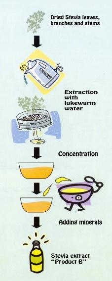 stevia concentration 1